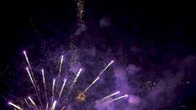 Fogos-de-artifício coloridos brilhantes vídeos de arquivo