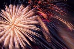Fogos-de-artifício coloridos, como a peônia e faíscas cor-de-rosa Fundo colorido do feriado do fogo de artifício Imagens de Stock