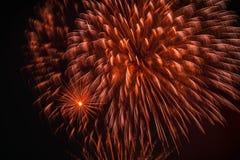 Fogos-de-artifício coloridos, como a peônia grande com faíscas Dispositivos pirotécnicos explosivos para finalidades estéticas e  Fotografia de Stock Royalty Free