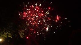 Fogos de artifício coloridos contra o céu preto No primeiro plano s?o as ?rvores filme