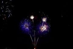 Fogos-de-artifício coloridos da celebração Fotografia de Stock Royalty Free
