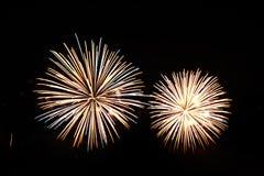 Fogos-de-artifício coloridos da celebração Foto de Stock Royalty Free