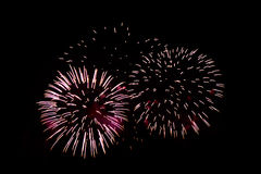 Fogos-de-artifício coloridos da celebração Fotografia de Stock