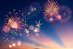 Fogos-de-artifício coloridos do feriado Imagens de Stock Royalty Free