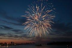 Fogos-de-artifício coloridos no céu nocturno. Fotos de Stock