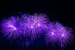 Fogos-de-artifício coloridos no céu preto Foto de Stock Royalty Free