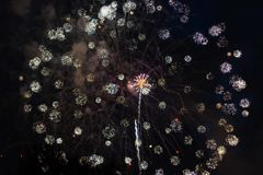Fogos-de-artifício coloridos no 4o julho fotografia de stock royalty free