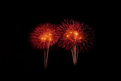 Fogos-de-artifício coloridos sobre o céu escuro, indicado durante um evento da celebração Imagens de Stock Royalty Free