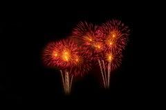 Fogos-de-artifício coloridos sobre o céu escuro, indicado durante um evento da celebração Imagem de Stock Royalty Free