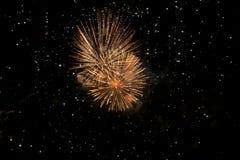 Fogos-de-artifício coloridos surpreendentes em um fundo do céu noturno Imagem de Stock Royalty Free