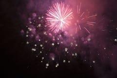 Fogos-de-artifício cor-de-rosa Imagem de Stock Royalty Free