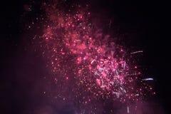Fogos-de-artifício cor-de-rosa em um céu preto Fotografia de Stock