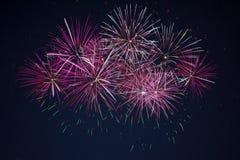 Fogos-de-artifício cor-de-rosa vermelhos marrons efervescentes da celebração Imagem de Stock