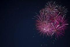 Fogos-de-artifício cor-de-rosa vermelhos marrons surpreendentes da celebração Imagens de Stock