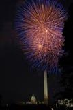 Fogos-de-artifício da C.C. Imagem de Stock