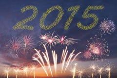 2015 fogos-de-artifício do ano novo Fotografia de Stock Royalty Free