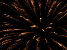 Fogos-de-artifício do ouro Foto de Stock Royalty Free