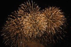 Fogos-de-artifício dourados Fotografia de Stock Royalty Free