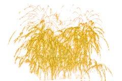 Fogos-de-artifício dourados da faísca - isolado colorido bonito do fogo de artifício Foto de Stock Royalty Free