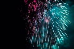 Fogos-de-artifício e árvores Fotos de Stock Royalty Free