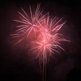 Fogos-de-artifício em um céu preto Fotos de Stock