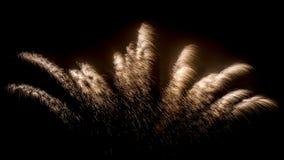 Fogos-de-artifício em um fundo escuro imagens de stock royalty free