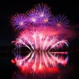 Fogos-de-artifício espetaculares coloridos Imagem de Stock