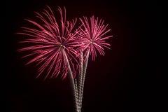 Fogos-de-artifício, feriados, partys, celebrações Imagens de Stock