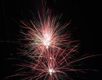 Fogos-de-artifício na flor completa na noite fotografia de stock royalty free