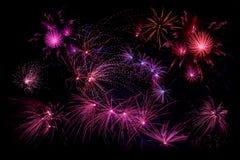 Fogos-de-artifício nas cores violetas Fotos de Stock