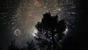 fogos-de-artifício no céu escuro vídeos de arquivo