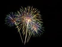 Fogos-de-artifício no céu escuro Fotografia de Stock Royalty Free