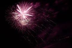 Fogos-de-artifício no céu nocturno Imagens de Stock Royalty Free