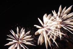 Fogos-de-artifício no céu nocturno Fotografia de Stock