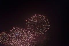 Fogos-de-artifício no céu noturno em honra do feriado Imagem de Stock Royalty Free