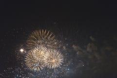 Fogos-de-artifício no céu noturno em um feriado Imagens de Stock Royalty Free