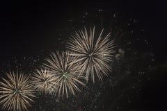 Fogos-de-artifício no céu noturno em um feriado Foto de Stock
