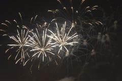 Fogos-de-artifício no céu noturno em um feriado Imagem de Stock Royalty Free