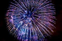 Fogos-de-artifício no fundo escuro do céu Imagens de Stock
