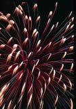 Fogos-de-artifício no 4o julho fotos de stock