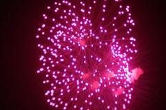 Fogos-de-artifício roxos Fotos de Stock Royalty Free