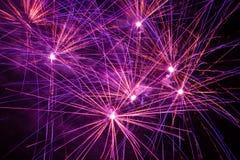 Fogos-de-artifício roxos, cor-de-rosa e alaranjados imagens de stock royalty free