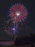 Fogos-de-artifício sobre a linha de árvore Fotos de Stock Royalty Free