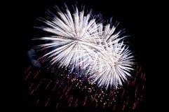 Fogos-de-artifício surpreendentes brancos do vermelho azul no fim escuro do fundo acima Fotografia de Stock
