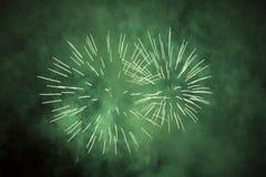 Fogos-de-artifício verdes Imagens de Stock Royalty Free