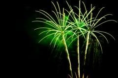 Fogos-de-artifício verdes da palma no fundo preto do céu Fotografia de Stock