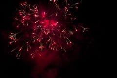Fogos-de-artifício vermelhos Fotos de Stock
