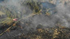 Fogos em grande escala Grama e árvores de queimadura em uma grande área Carros de bombeiros no lugar do fogo filme