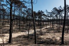 Fogos em Portugal imagem de stock