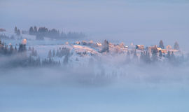 Fogs..fogs. Carpathian mountains with pine trees in the fog Royalty Free Stock Photos